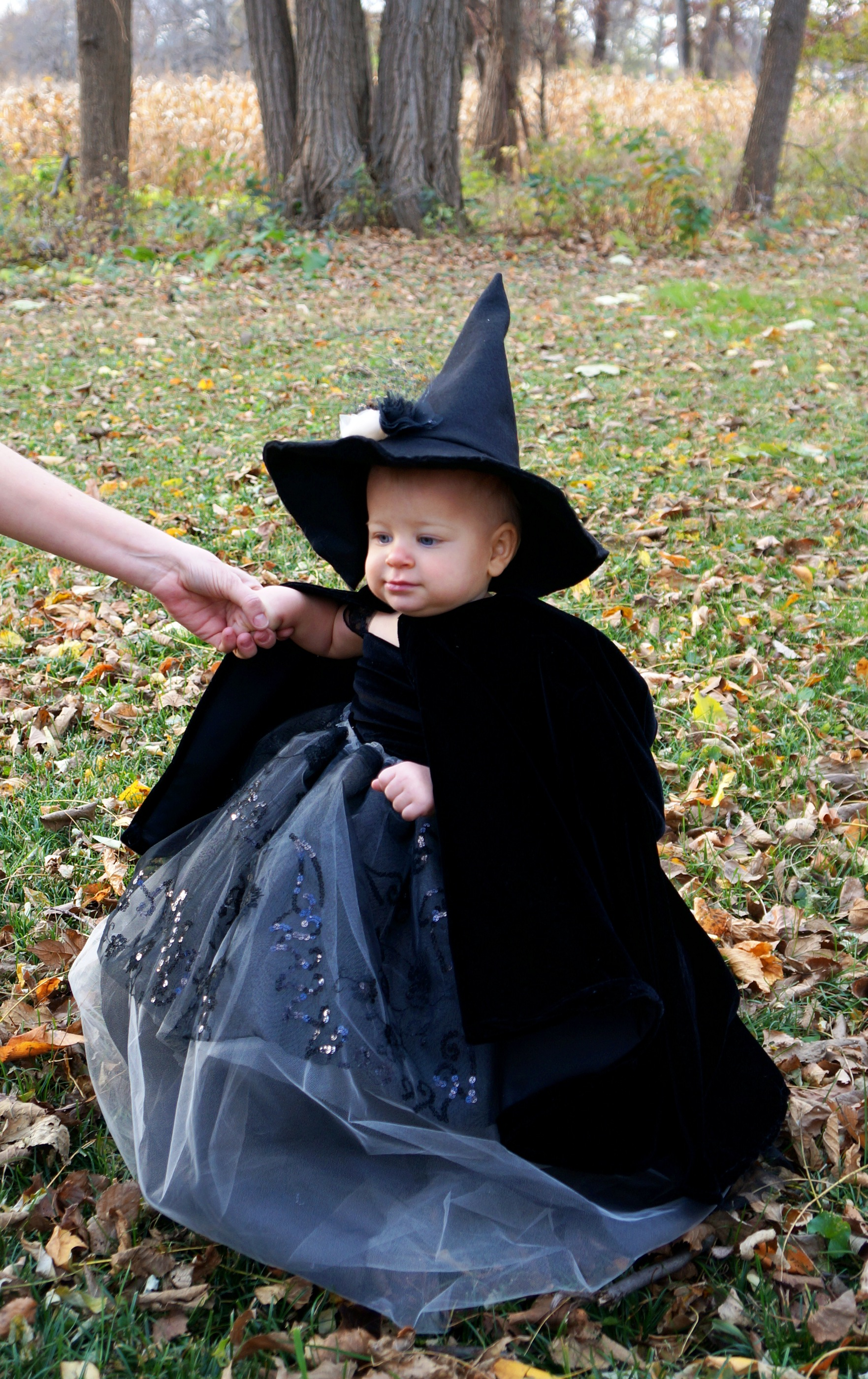 Baby Witch Costume with Velvet Cloak  sc 1 st  armourgirl - WordPress.com & DIY Couture Baby Witch Costume u2013 Part 3 u2013 armourgirl